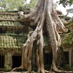 Cambodia Travel – Getting There and Around